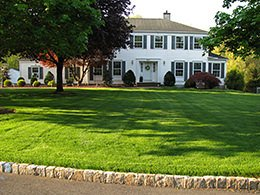 Organic Lawn Treatment & Lawn Care in New Jersey