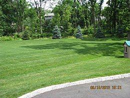 Basking Ridge Organic Lawn Care Service